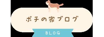 ポチの家ブログ